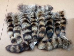 XL Tanned Raccoon Tail/Crafts/Real USA Fur Tail/Harley parts